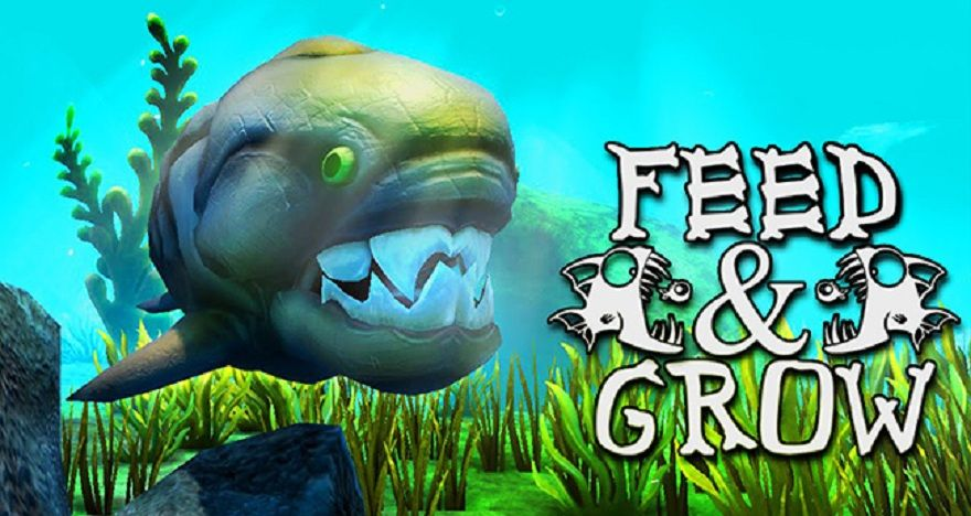 feed-and-grow-fish-1.jpg